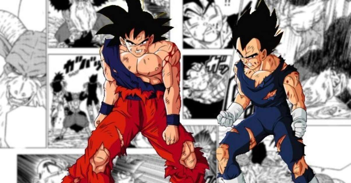 Dragon Ball Goku And Vegeta Loss 1231282